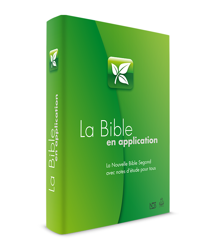 9782863144541, bible, nbs, NIV study Bible,