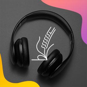 bible semeur audio, mp3, téléchargements