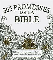 9782853006743, promesses, bible